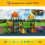 CE Safe Attracted Outdoor Playground Equipment per School (A-15109)