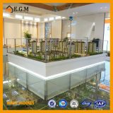 Modelo de las propiedades inmobiliarias/diseño/modelo modelo arquitectónico de la casa/toda la clase de fabricación de las muestras