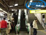 Scala mobile resistente dell'ascensore per persone di trasporto pubblico