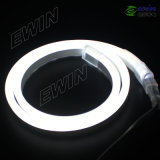 Mini-LED Neon (8*16mm)