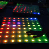 IP65庭のための白い12/24V 1.5kg LEDのタイルライト