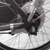 Bicicletta elettrica En15194 (JSL036B) della città di alta qualità 250W 36V 700c