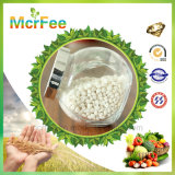 Fertilizante soluble en agua de NPK 6-12-36+Te el 100%