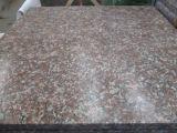 Granito poco costoso della pietra per lastricati G687 di fabbricazione professionale