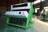 De Sorterende Machine van de Kleur van de haver met de Volledige Technologie van de Kleur