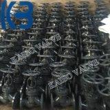Pn16 Dn25 de Gegoten Klep van de Bol van het Roestvrij staal GOST/API/DIN