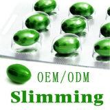 Hot Selling OEM Weight perde cápsulas de emagrecimento com etiqueta privada