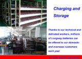batería de almacenaje 12V60ah@20hr para el sistema eléctrico