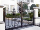 Cancello ornamentale rivestito della bella polvere nello stile conciso di disegno