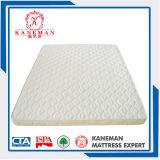 Matelas roulés bon marché de mousse de lit de couchette de Shengfang des prix