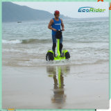 Largeの地勢WheelsとのElectric Scooterの上のEnergy緑のLithium Battery Max Load 130kgクロス・カントリーSmart Self Balance Stand