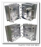 Chine Professional Precision Injection Plastique Moule (BBE-201001)
