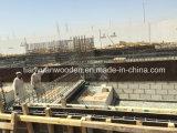 A madeira compensada/a película Shuttering molde da construção enfrentou a madeira compensada