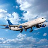 Agente dell'aereo da trasporto dalla Cina a Katowice Polonia
