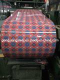 Высокое качество Prepainted гальванизированные стальные катушки PPGI на низкой цене