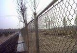 Engranzamento de fio revestido da cerca da ligação Chain do PVC