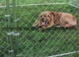 Cerca temporária do cão 1.2m X 2.3m X 2.3m Tamanho DIY Dog Kennel Made in China