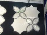 Mármoles naturales Shaped y azulejos de la mezcla de Carrara de Thassos de agua de la flor blanca blanca del jet