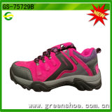 Самое лучшее продавая взбираясь Trekking цена ботинка самое лучшее в Китае