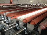 고품질 공장 가격 자동적인 유리제 세탁기