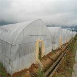 Экономичный поли парник тоннеля крышки для земледелия