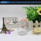 Schrauben-Mund-Glasflasche für Pudding und Süßigkeit