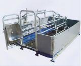 Werfender Rahmen-Schwein-Zufuhr-Rahmen