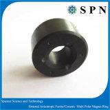 Del ferrito anello multipolare a magnete permanente di ceramica duro