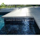 De beste Verkopende Geslepen Pool die van het Graniet van het Fortuin van de Oppervlakte G684 Zwarte voor Zwembad het hoofd biedt