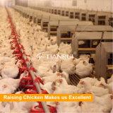 Птицеферма смолотая/пол поднимая оборудование бройлера цыпленка