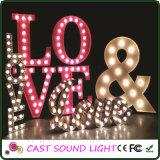 Indicatori luminosi della decorazione di cerimonia nuziale del segno della lettera del LED