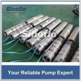 Edelstahl-versenkbare Pumpe für Meerwasser-Anlage-Kühlsystem