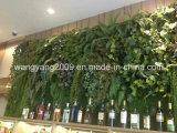 최신 판매 호텔 대중음식점 상록 꽃 플랜트 벽