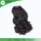 Fumiの毛の優秀な品質のブラジルのRemyの毛