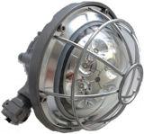 luz Energy-Saving da prova da flama do diodo emissor de luz 12-30W para Passway perigoso