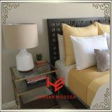 角表(RS161303)の茶表の側面表のコーヒーテーブルのステンレス鋼の家具のホーム家具のホテルの家具の現代家具表のコンソールテーブル