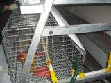 養鶏場装置または若めんどりの(小さい)鶏のケージシステム