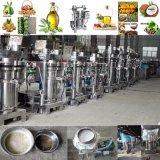 Máquina fría de la prensa del petróleo de cacahuete de la calabaza de la almendra de la extracción del sésamo