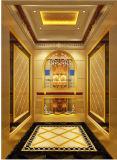 중국에 있는 Fujizy 전송자 엘리베이터 가격