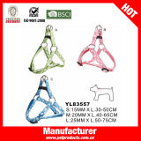 폴카 DOT Dog Harness Leash, Dog Collar 및 Leash (YL83557)