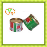 Fábrica conservada Gino, tomates, alimento conservado de la goma de tomate
