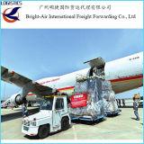 Dlaの安く全体的なロジスティクスの船便の空気Freigthは中国から世界的にに要した(ベルギー)