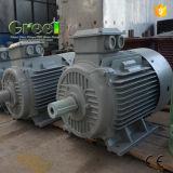 gerador de ímã permanente de 250kw 200rpm usado para a energia hidráulica