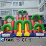 Coco-Wasser-Entwurfs-aufblasbares Kombinations-Labyrinth-Prahler-Schloss LG9081