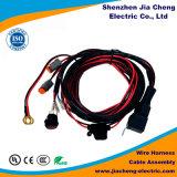 Fornecedor feito sob encomenda de Shenzhen do chicote de fios do fio do conjunto de cabo do fio de Molex