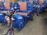 高品質の電気バイクのタクシー、自転車の人力車、タクシーの三輪車、人力車の三輪車
