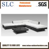 Sofa réglé/chaud de sofa de rotin de rotin/sofa extérieur élégant réglé (SC-B7018-B)