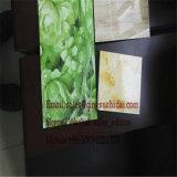 Panneau de décoration de panneau de Module de cuisine de panneau de construction de Formowrk de panneau de mousse de PVC annonçant le panneau