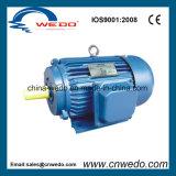 Мотор индукции серии y трехфазный (0.37-315KW)