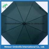 쉬운 조밀한 작은 Foldable 형식 EVA 상자 우산을 취하십시오